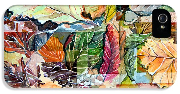 Autumn Falls IPhone 5 / 5s Case by Mindy Newman