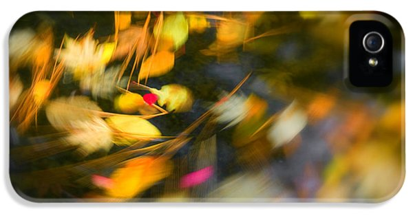 Circling iPhone 5 Cases - Autumn Swirl iPhone 5 Case by Idaho Scenic Images Linda Lantzy