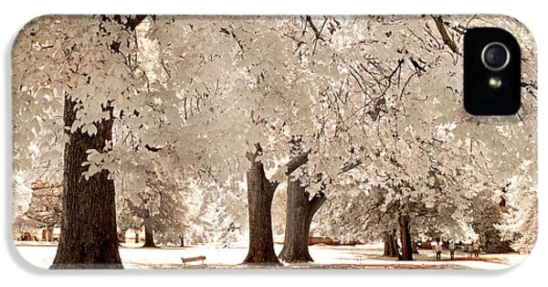 Infrared iPhone 5 Cases - Autumn Walk iPhone 5 Case by Paul W Faust -  Impressions of Light