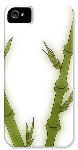 Bamboo IPhone 5 / 5s Case by Frank Tschakert