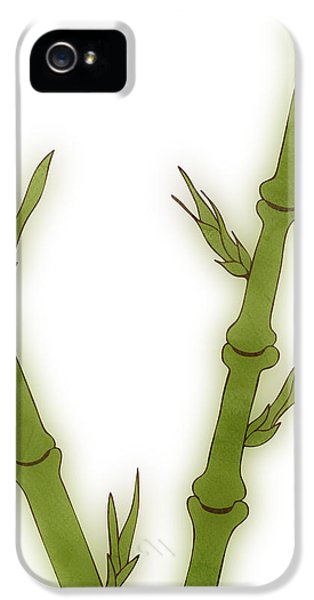 Ecology iPhone 5 Cases - Bamboo iPhone 5 Case by Frank Tschakert