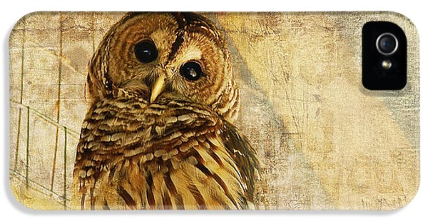 Beak iPhone 5 Cases - Barred Owl iPhone 5 Case by Lois Bryan