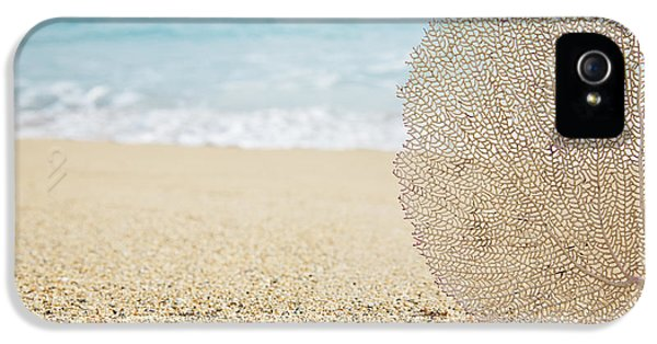 Ashore iPhone 5 Cases - Beautiful Coral Element 1 iPhone 5 Case by Brandon Tabiolo - Printscapes