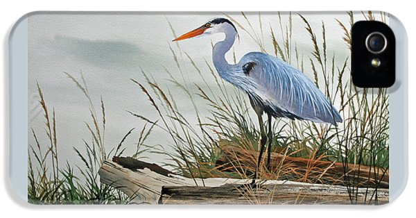Beautiful Heron Shore IPhone 5 / 5s Case by James Williamson