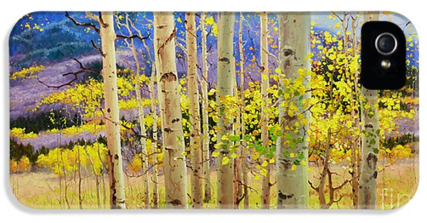 Gay Art iPhone 5 Cases - Beauty of Aspen Colorado iPhone 5 Case by Gary Kim