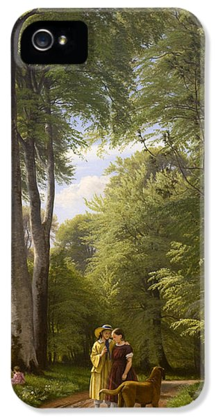 Gil iPhone 5 Cases - Beech Trees in a Danish Landscape iPhone 5 Case by Peter Christian Skovgaard