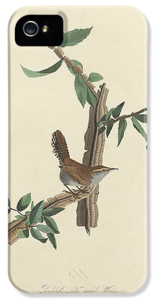 Bewick's Long-tailed Wren IPhone 5 / 5s Case by John James Audubon