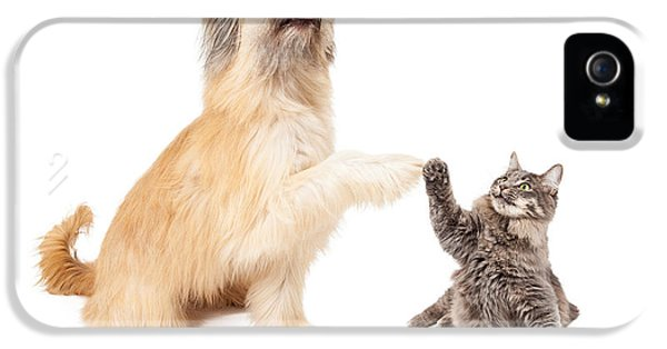 Greet iPhone 5 Cases - Big Dog and Little Cat High Five iPhone 5 Case by Susan  Schmitz