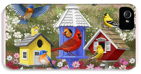Bird Painting - Primary Colors IPhone 5 / 5s Case by Crista Forest