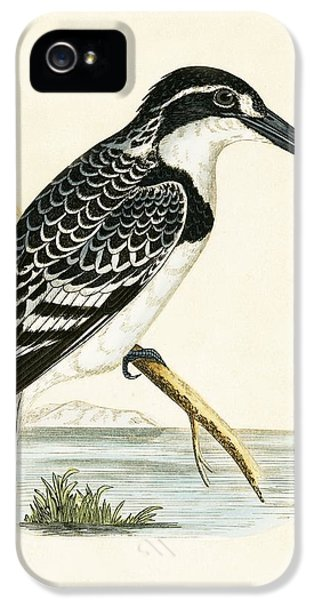 Black And White Kingfisher IPhone 5 / 5s Case by English School