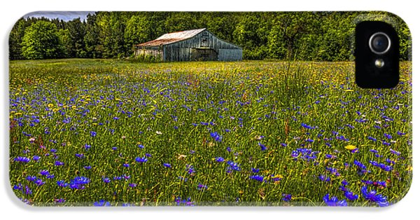 Blooming Country Meadow IPhone 5 / 5s Case by Marvin Spates