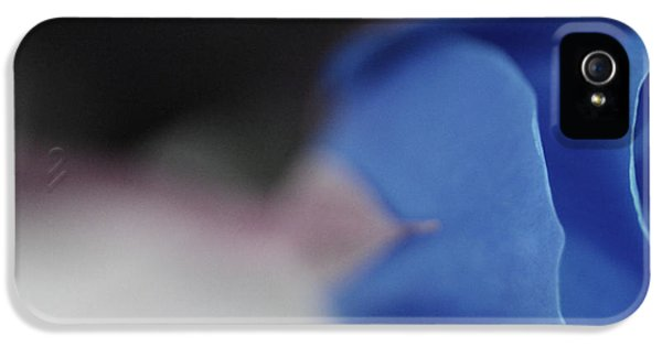Roses iPhone 5 Cases - Blue Destiny iPhone 5 Case by  The Art Of Marilyn Ridoutt-Greene