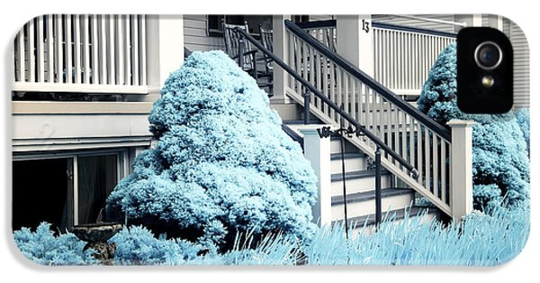 Down In The Garden iPhone 5 Cases - Blue Grass in Ocean Grove iPhone 5 Case by John Rizzuto