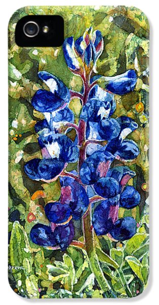 Bluebonnets iPhone 5 Cases - Blue in Bloom iPhone 5 Case by Hailey E Herrera