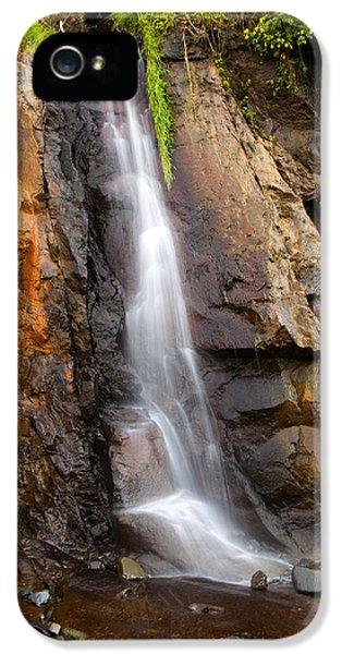 Oregon Coast iPhone 5 Cases - Boiler Bay Cascade iPhone 5 Case by Mike  Dawson