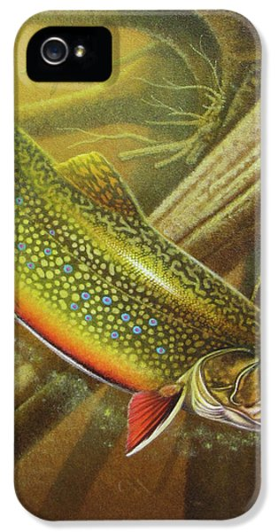 Brook Trout Cover IPhone 5 / 5s Case by JQ Licensing