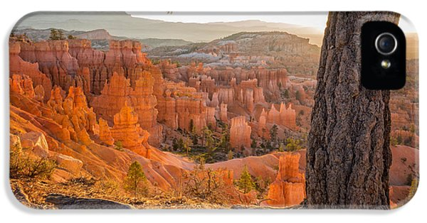 Tourism iPhone 5 Cases - Bryce Canyon National Park Sunrise 2 - Utah iPhone 5 Case by Brian Harig