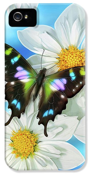 Songbird iPhone 5 Cases - Butterfly 2 iPhone 5 Case by JQ Licensing