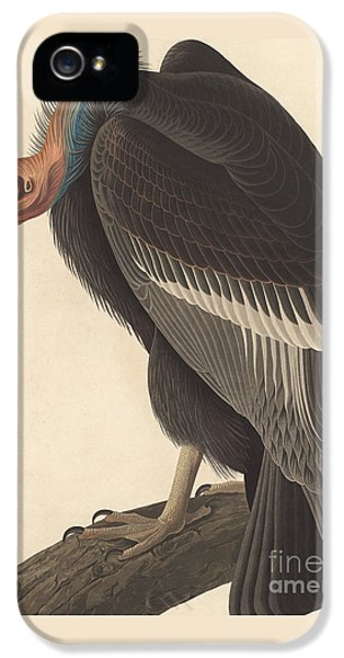 Californian Vulture IPhone 5 / 5s Case by John James Audubon