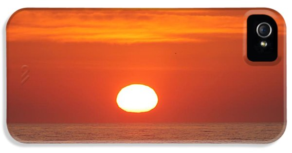 House Md Art iPhone 5 Cases - Calm Seas Sunrise iPhone 5 Case by Robert Banach
