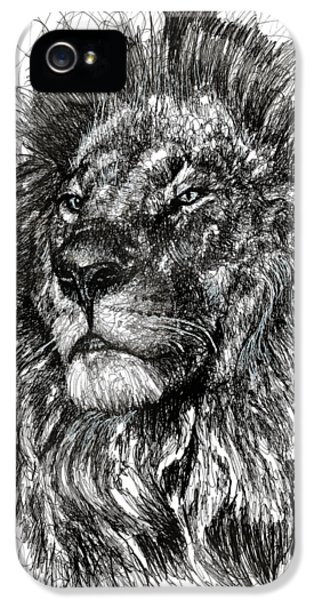 Lion iPhone 5 Cases - Cecil The Lion iPhone 5 Case by Michael  Volpicelli
