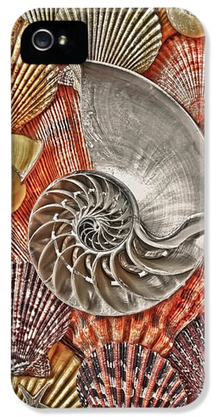 Chambered Nautilus Shell Abstract IPhone 5 / 5s Case by Garry Gay
