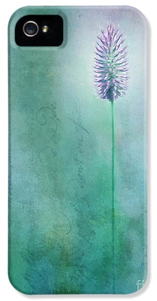 Blossom iPhone 5 Cases - Chandelle iPhone 5 Case by Priska Wettstein