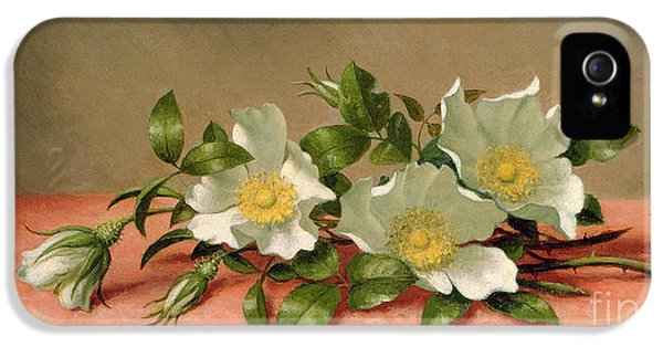 Cherokee Roses IPhone 5 / 5s Case by Martin Johnson Heade