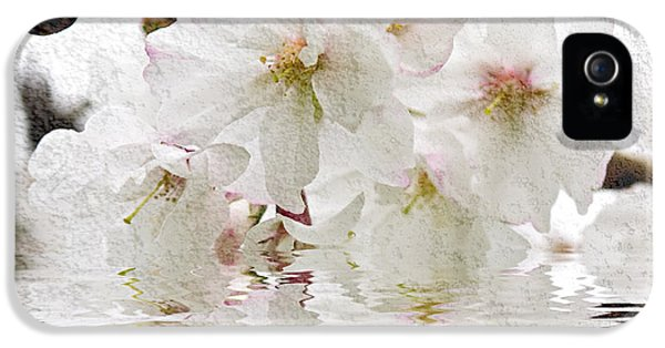 Blossom iPhone 5 Cases - Cherry blossom in water iPhone 5 Case by Elena Elisseeva