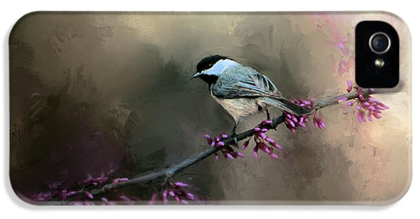 Chickadee In The Light IPhone 5 / 5s Case by Jai Johnson