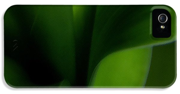 Chlorophyll iPhone 5 Cases - Chlorophylls Selectivity iPhone 5 Case by Linda Knorr Shafer