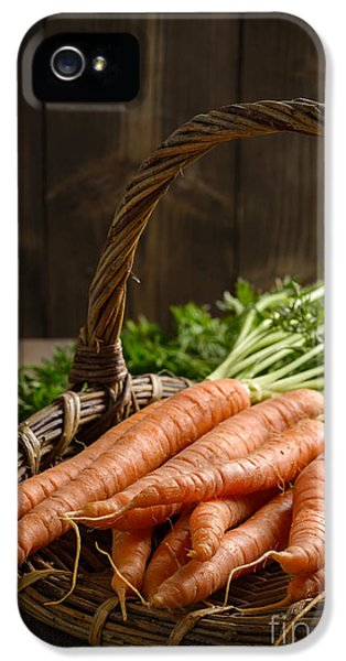 Allotment iPhone 5 Cases - Close Up Dirty Carrots iPhone 5 Case by Amanda And Christopher Elwell