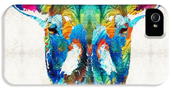 Ewe iPhone 5 Cases - Colorful Sheep Art - Shear Color - By Sharon Cummings iPhone 5 Case by Sharon Cummings