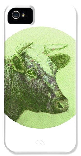 Cow II IPhone 5 / 5s Case by Desiree Warren
