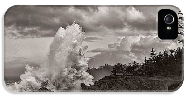 Shore Acres iPhone 5 Cases - Crashing Waves at Shore Acres iPhone 5 Case by Patricia  Davidson