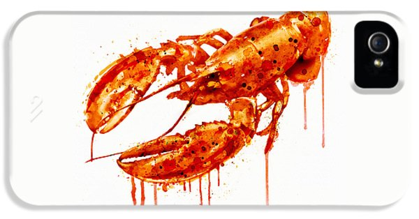 Crustacean iPhone 5 Cases - Crawfish watercolor painting iPhone 5 Case by Marian Voicu