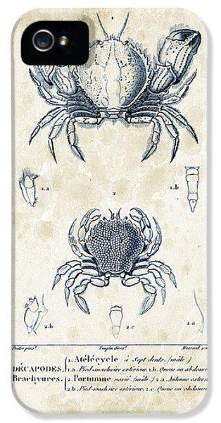 Crustacean iPhone 5 Cases - Crustaceans - 1825 - 02 iPhone 5 Case by Aged Pixel