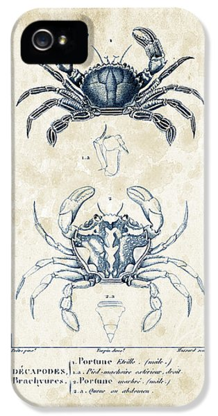 Crustacean iPhone 5 Cases - Crustaceans - 1825 - 03 iPhone 5 Case by Aged Pixel