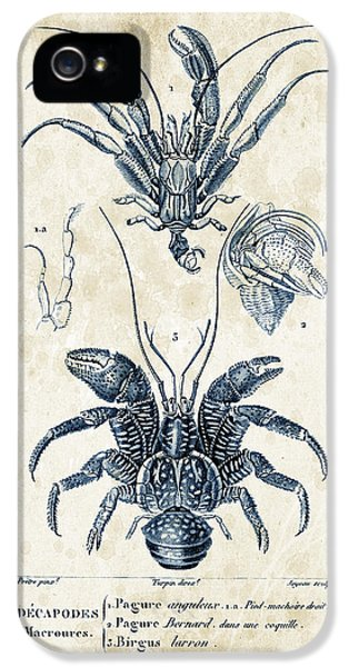 Crab iPhone 5 Cases - Crustaceans - 1825 - 28 iPhone 5 Case by Aged Pixel