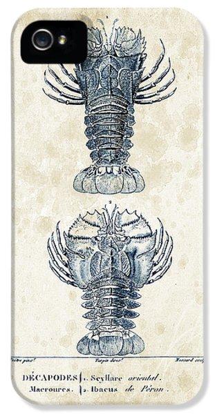 Crustacean iPhone 5 Cases - Crustaceans - 1825 - 29 iPhone 5 Case by Aged Pixel