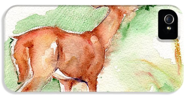 Deer Painting In Watercolor IPhone 5 / 5s Case by Maria's Watercolor
