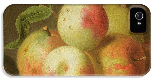 Detail Of Apples On A Shelf IPhone 5 / 5s Case by Jakob Bogdany