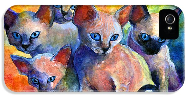 Devon Rex Kitten Cats IPhone 5 / 5s Case by Svetlana Novikova