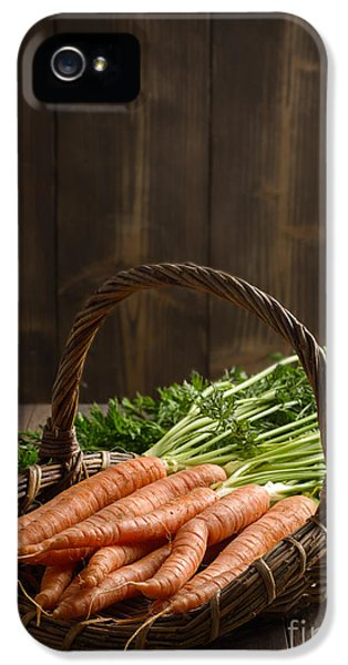 Allotment iPhone 5 Cases - Dirty Carrots iPhone 5 Case by Amanda And Christopher Elwell