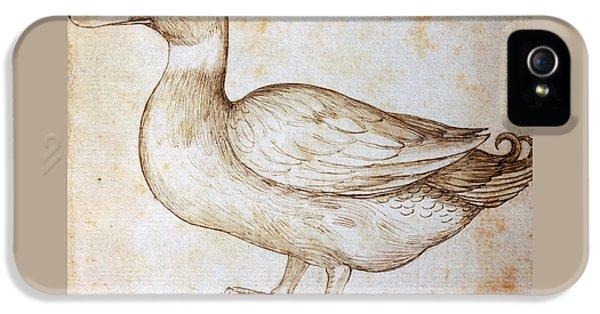 Duck IPhone 5 / 5s Case by Leonardo Da Vinci