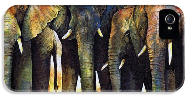 Animals iPhone 5 Cases - Elephant Herd iPhone 5 Case by Paul Dene Marlor
