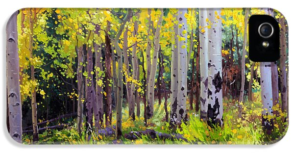 Gay Art iPhone 5 Cases - Fall Aspen Forest iPhone 5 Case by Gary Kim