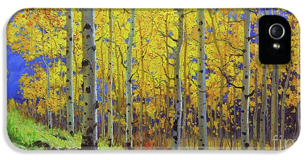 Gay iPhone 5 Cases - Fall Aspen Hill  iPhone 5 Case by Gary Kim