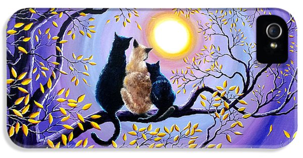 Black Cat iPhone 5 Cases - Family Moon Gazing Night iPhone 5 Case by Laura Iverson