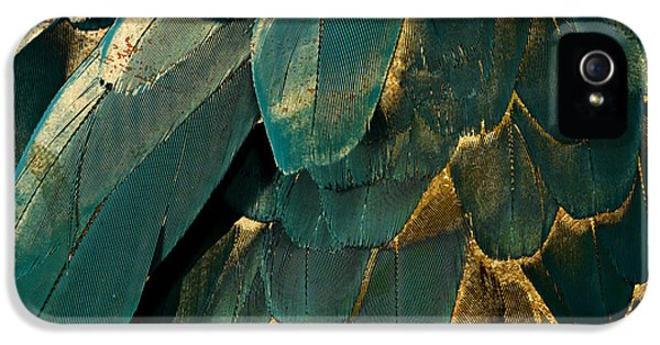 Feather Glitter Teal And Gold IPhone 5 / 5s Case by Mindy Sommers